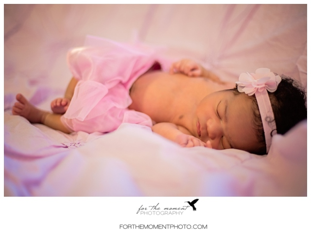 avery_st_louis_newborn_photographer-1003