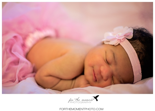 avery_st_louis_newborn_photographer-1004