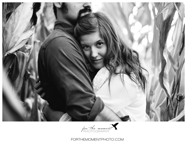 Cornfield Engagement Photos www.forthemomentphoto.com