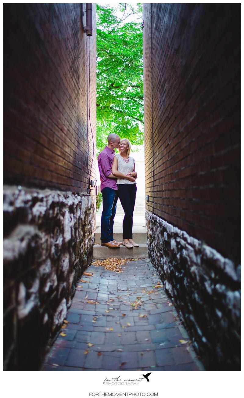 Forest Park Engagement Photos St Louis Wedding Photographers