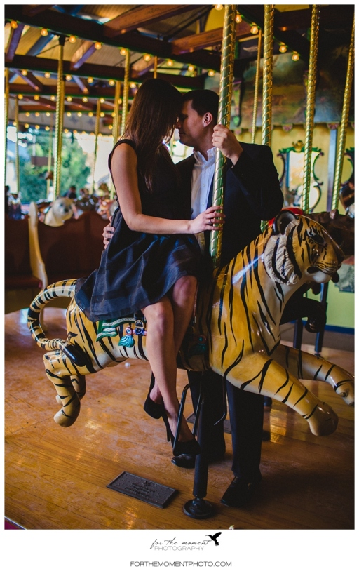 Carousel Vintage St Louis Wedding Photography | For The Moment Photography